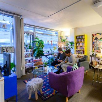 Two students sit in their apartment with colorful purple chairs, yellow bookshelves and big windows