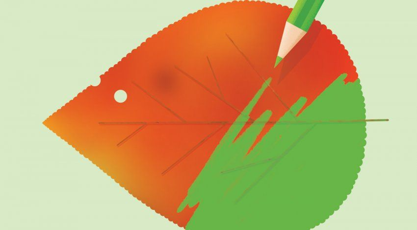Illustration of a red, autumnal leaf, with a green pencil coloring over the leaf and turning it green.