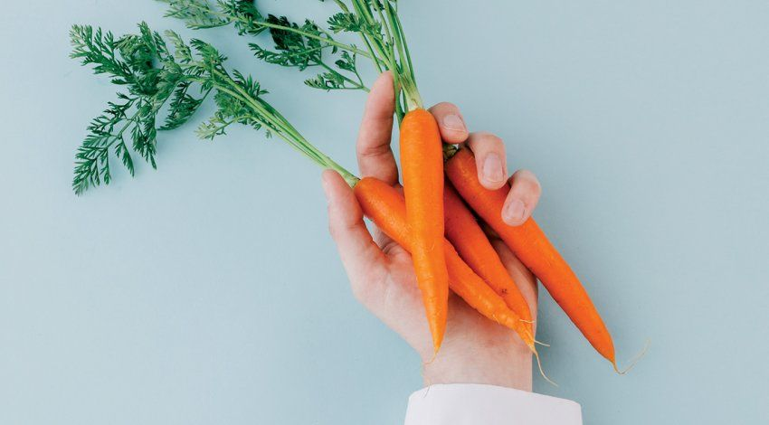 Photo of a doctor's hand in a white coat holding a bunch of carrots on a blank blue background.