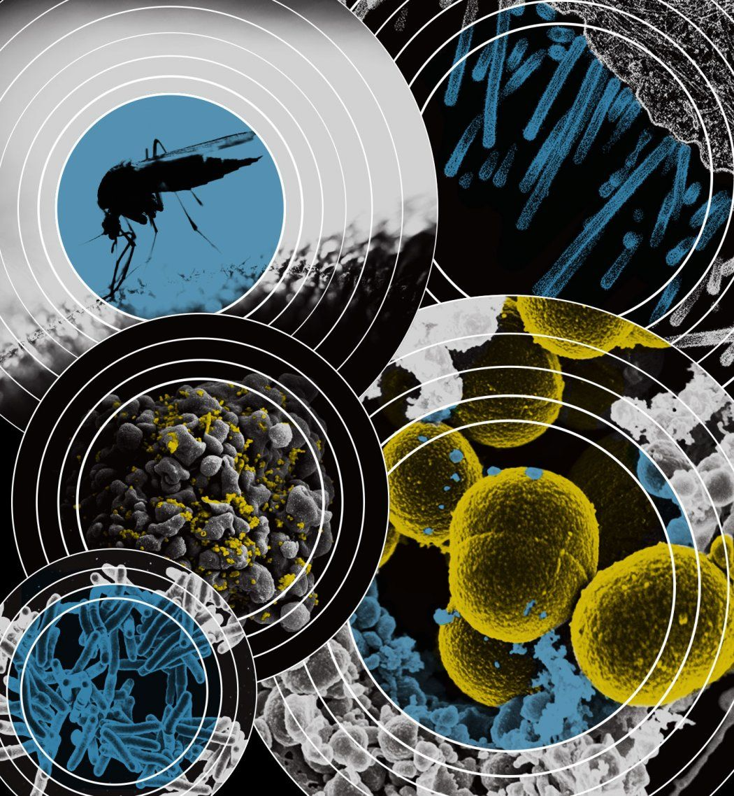 Photo illustration of infectious diseases under microscopes and a mosquito in concentric circles.